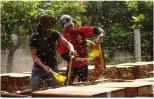Xúc tiến xây dựng nhãn hiệu tập thể cho mật ong hoa nhãn Hưng Yên
