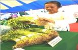 Nông dân tiếp thị rau sạch