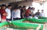 Nông dân Ân Thi tham quan học tập mô hình phát triển kinh tế cho hiệu quả.