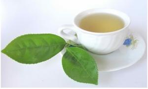Uống trà trị bệnh