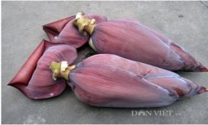 Dưa bắp chuối - Món ngon chống ngán