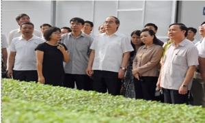 Vingroup sẽ hỗ trợ đưa sản phẩm của nông dân vào cửa hàng an toàn