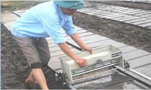 Cơ giới hóa khâu gieo mạ, cấy lúa bằng máy