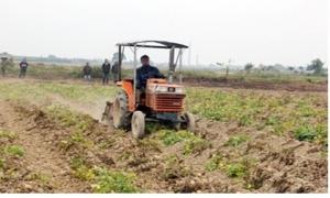 Hưng Yên: Tái cơ cấu nông nghiệp từ tích tụ ruộng đất