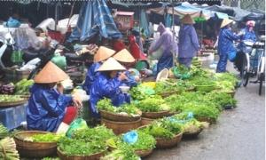 Giá rau vụ Đông giảm mạnh
