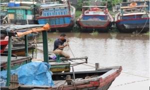 Phó Thủ tướng Trịnh Đình Dũng: Chủ động ứng phó với bão số 3