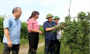 Chủ tịch UBND tỉnh Nguyễn Văn Phóng kiểm tra, chỉ đạo công tác phòng, chống bão số 10