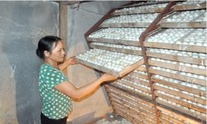 """Ấp trứng """"nở ra tiền"""", nhiều nông dân Đào Đặng thành triệu phú"""
