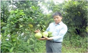 Người nông dân Hưng Yên làm kinh tế giỏi được tặng Huân chương Lao động hạng Ba