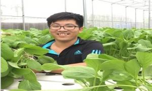 Hiệu quả bước đầu mô hình trồng rau sạch bằng phương pháp thủy canh