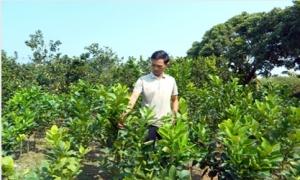 """Hưng Yên: Trao """"cần câu"""" giúp nông dân thoát nghèo"""