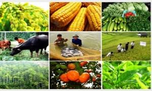 Bãi bỏ một loạt phí, lệ phí trong lĩnh vực nông nghiệp