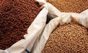 3 hình thức công bố hợp quy với thức ăn chăn nuôi truyền thống