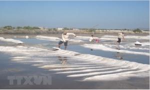 90% người dân Việt Nam ăn muối nhiều hơn mức khuyến cáo