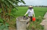 Thu gom, xử lý vỏ bao bì thuốc bảo vệ thực vật trên đồng ruộng